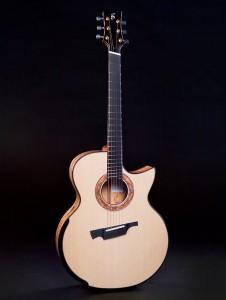 Greenfield guitar G4